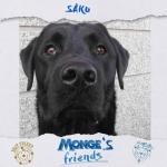 Cosa star fiutando Saku? mongesfriends dog monge mongeofficial pet petfoodhellip