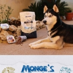 Enjoy the weekend! mongesfriends dog monge mongeofficial pet petfood nutritionhellip