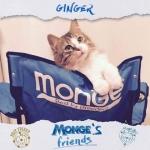Ginger  nata una stella  mongesfriends monge mongeofficial petfoodhellip