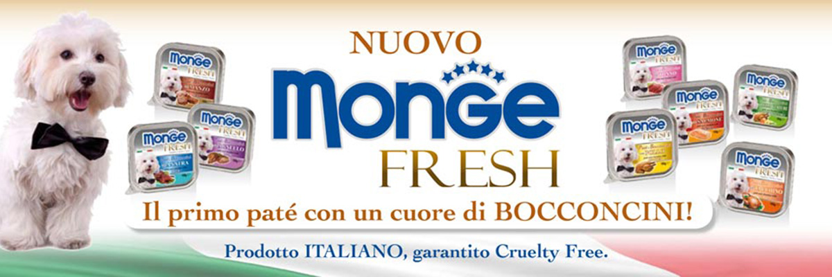 Monge_fresh_news_big