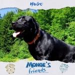 Hugo pronto ad affrontare ogni avventura mongesfriends monge mongeofficial pethellip