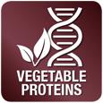 Ricco di proteine vegetali - Allevia la compromessa funzione epatica