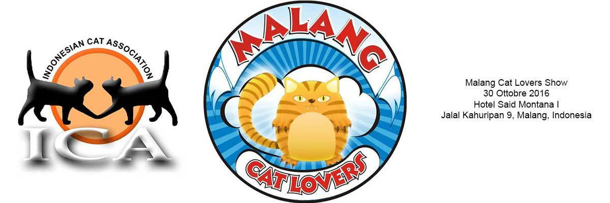 malang_cat_lovers