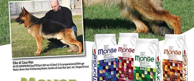 monge_breeders_casamax