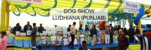 Ludhiana-Dog-Show