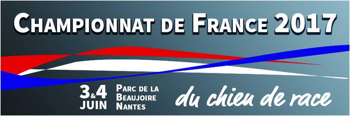campionato-di-francia-nantes