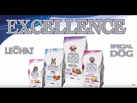 clip_excellence