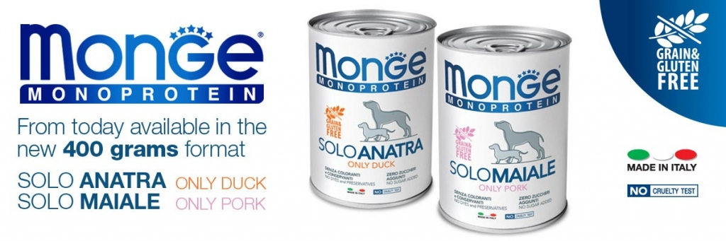 news-monge-sol-new-size-ENG