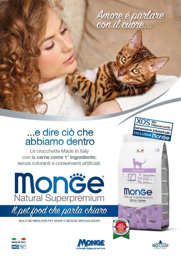 new-monge_2018_cat-1