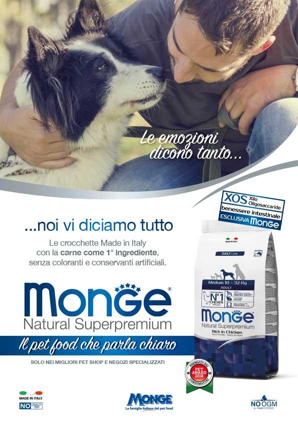 new-monge_2018_dog-3