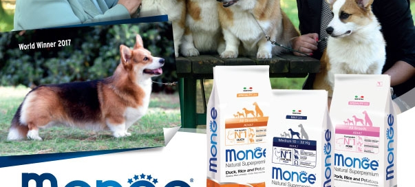 monge_breeders_-WALLFUGH