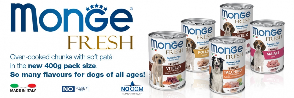news-monge-fresh-ENG