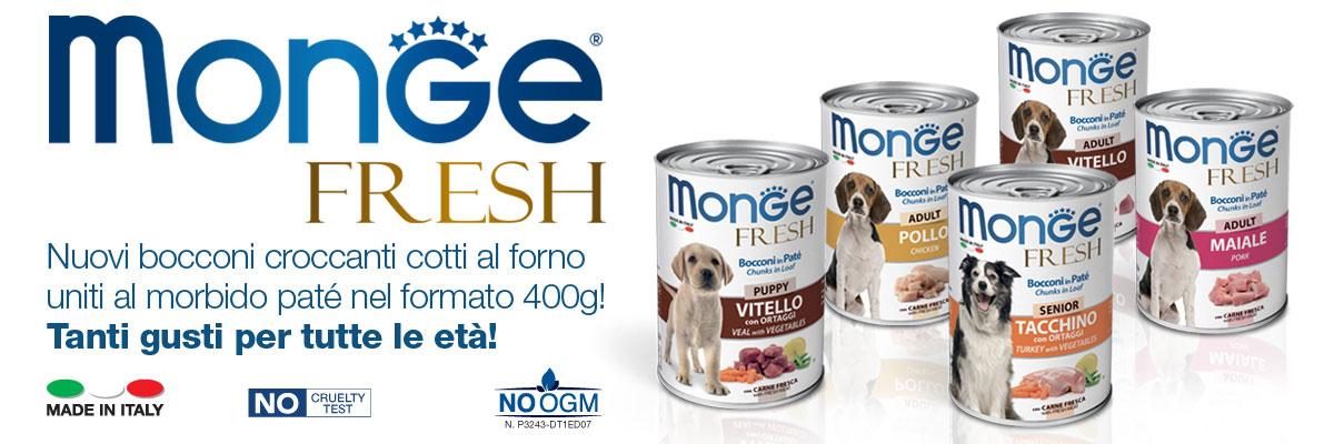 news-monge-fresh_2