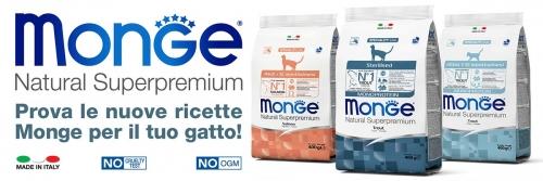 news-sito-trota-salmone2