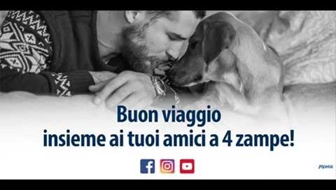 copertina_dog