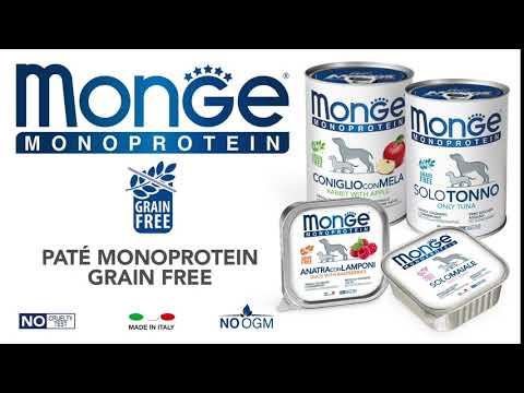 clip_monoprotein_monge