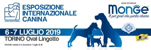 esposizione_canina_torino