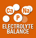 Electrolyte balance for the support of renal function
