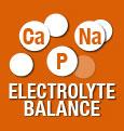 Bilanciamento elettrolitico per il supporto della funzione renale
