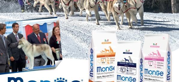 monge_breeders_vanisella
