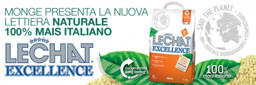 news lettiera exc2