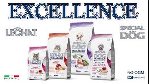 sp_lechat_excellence