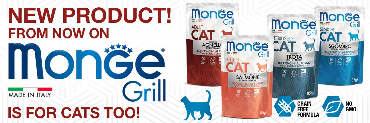 news grill cat2_ENG