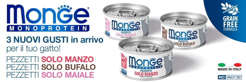 news_monge_pezzetti solo