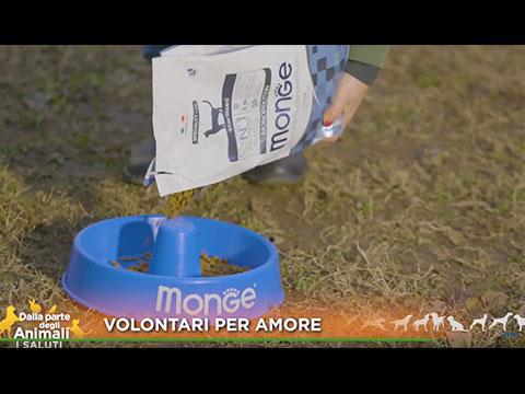 volontari-per-amore-pt2