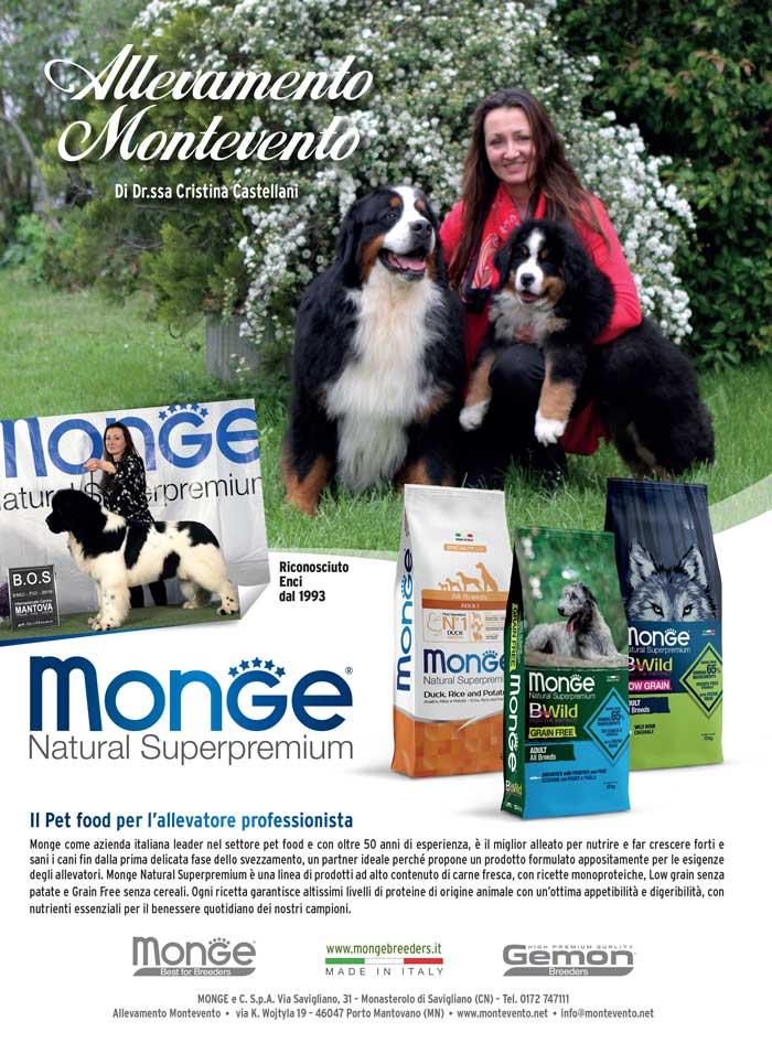 monge_breeders_-Montevento¹s