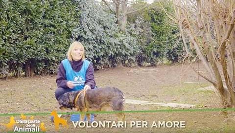 volontari_pt7