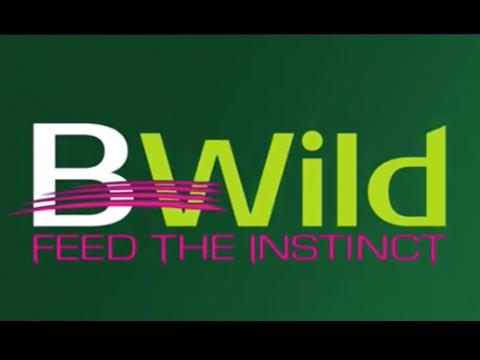 bwild_wet
