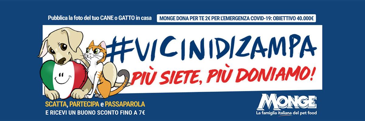 cover_vicinidizampa