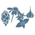 Artischockenextrakt, Echinacea, Oregano, Knoblauch - Zutaten und Pflanzenextrakte