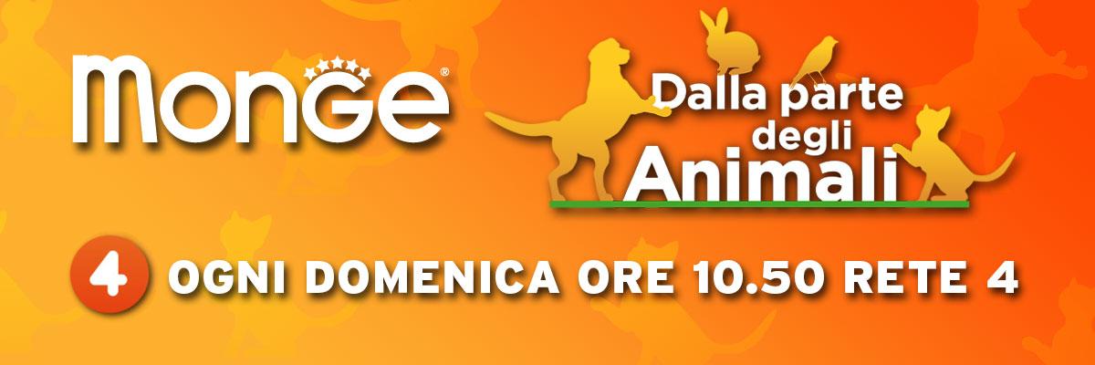 news_dalla_parte_degli_animali