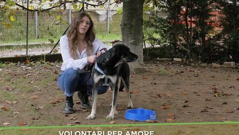 volontari_monge_puntata13