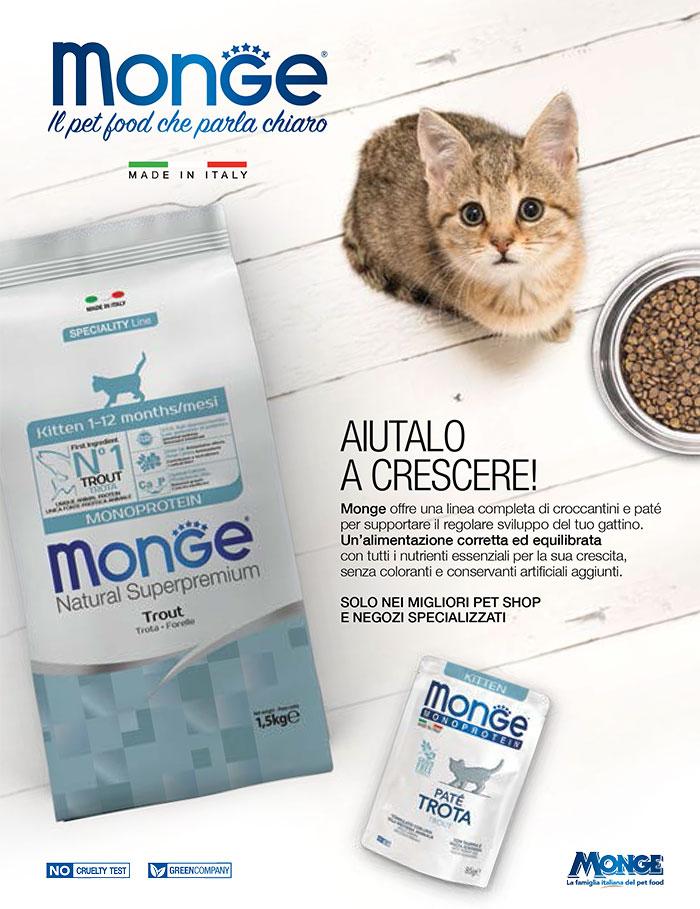 _Monge-dry+wet_PUPPY-KITTEN_bassa-2