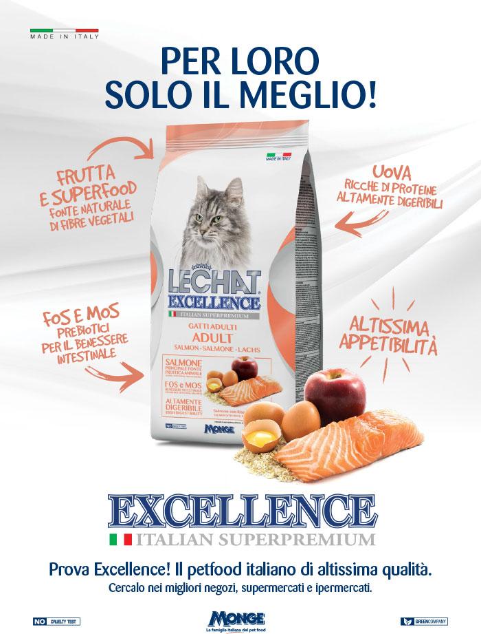 excellence_gatto