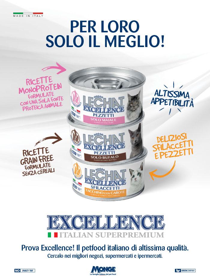 excellence_umido_gatto